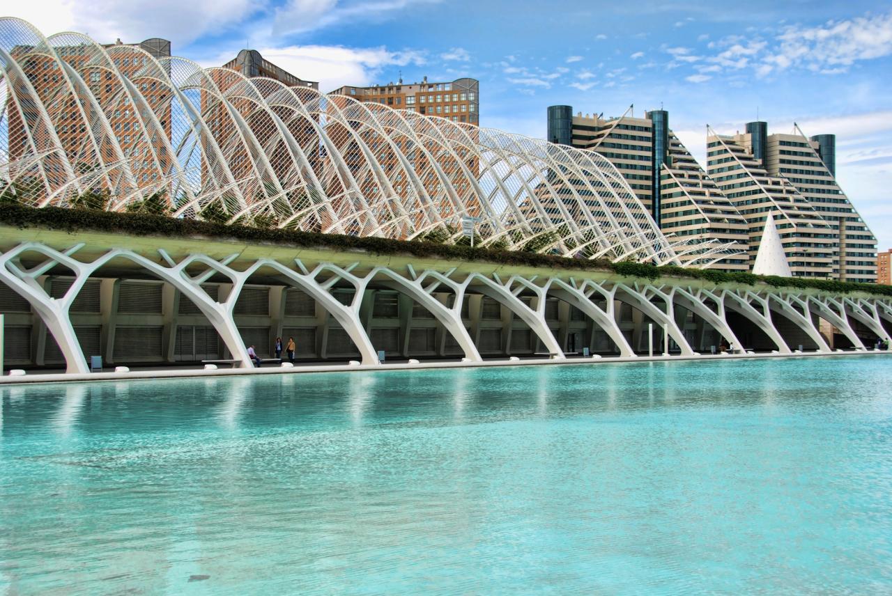 Ciudad de las Artes y las Ciencas Calatrava bridge