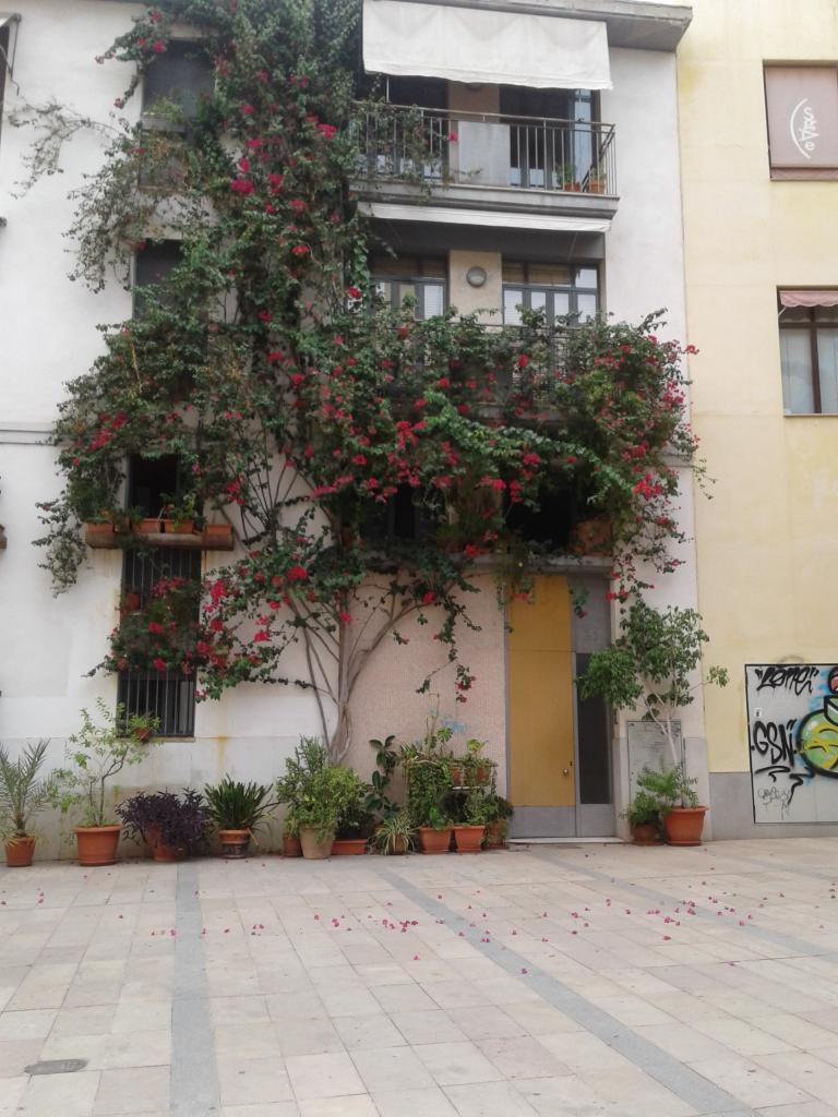 Valencia El Carmen