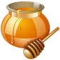 icon-honey-256-3.png